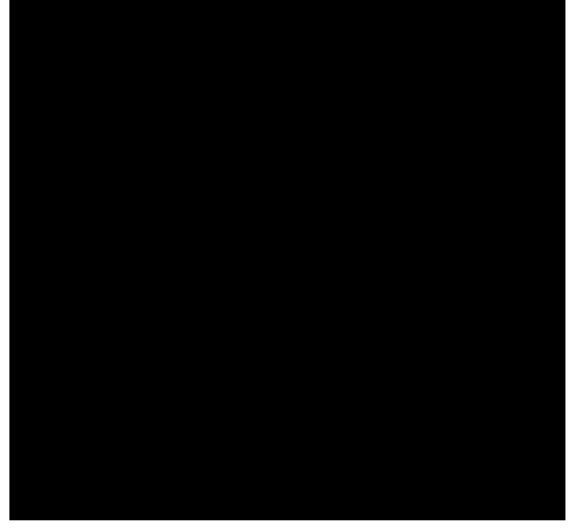PLUSPOL